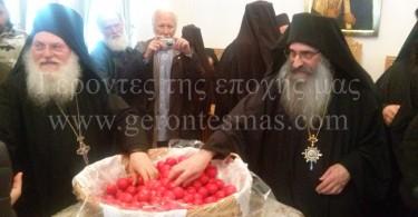 Πανήγυρις Παναγίας Ελαιοβρύτισσας Ι.Μ.Μ.Βατοπαιδίου 2015 - 01915